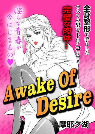 Awake Of Desireの表紙