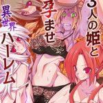 3人の姫と孕ませ異世界ハーレム [黒家(著)]  (BJ211052)