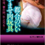 都合のいい孕ませ肉玩具 [榊原澪央(著)]  (BJ216677)