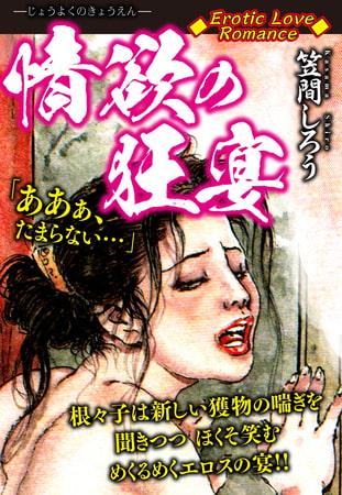 Erotic Love Romance 情欲の狂宴の表紙