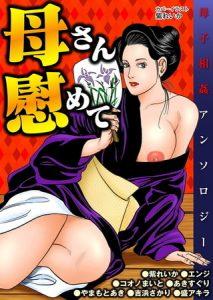 母さん慰めて [出版:劇画王]  (BJ241559)