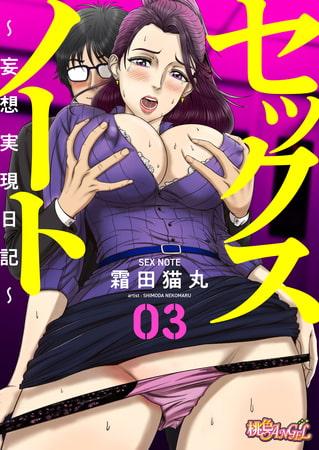 セックスノート ~妄想実現日記~ 3の表紙