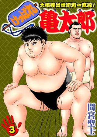 けっぱれ亀太郎3の表紙