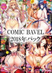 COMIC BAVEL 2018年パック [出版:文苑堂]  (BJ302381)